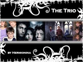"Wallpaper ""the trio"" by Hermionina"