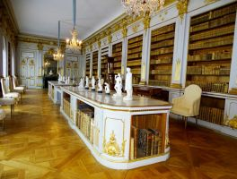 Library at castle Drottingholm by Olessa