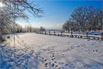 Winter in Poland 4 26.1.2013 by myblue7