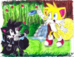Lil Seiki and Tails: Playing Frisbee by RoninHunt0987