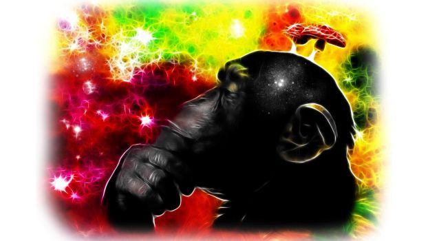 the stoned ape theory by 1SonOfAtoms0