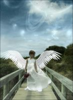Angel with the Clipped Wings by captain-archdandy