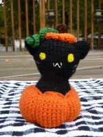 Kitty in a Pumpkin by MilesofCrochet