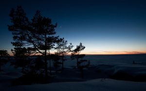 Winter Dusk by Smattila