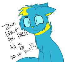 Zach..... by yellowstarburstkitty
