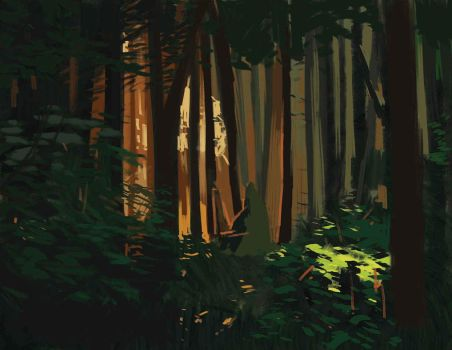 woods by warder120