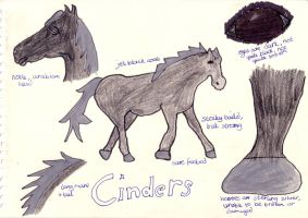 Cinders Ref Sheet by celuthea