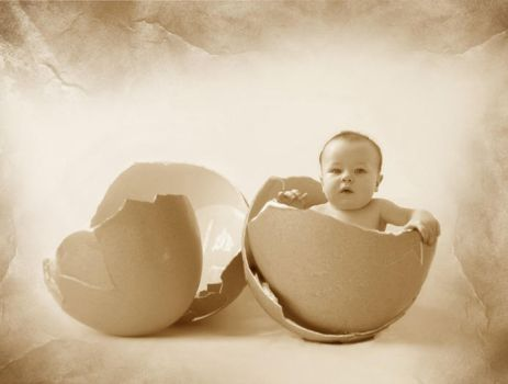 Baby in egg by aqua-glow
