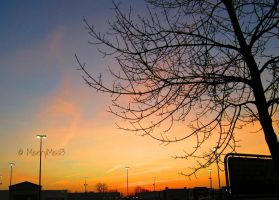 Sunrise - 12/14/2012 by Michies-Photographyy