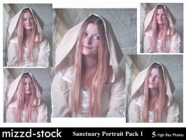 Sanctuary Portrait Pack 1 by mizzd-stock
