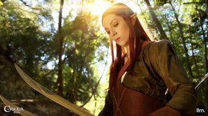 Tauriel and Swords by CORSIGLIA
