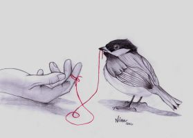 Freedom - the red string by Wilwarinn