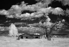 abandoned on the high plains - IR by eDDie-TK