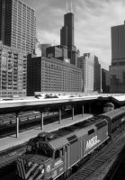 Chicago XX by DanielJButler