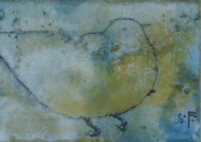 Bird Suspended ACEO by SethFitts