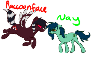 Raccoonface and Nay by SoberDOGS