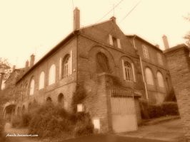 Old Building by Aneede