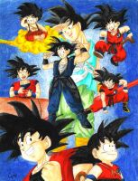 SonGoku by camlost