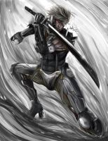 Raiden by Beverii