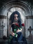 Red Roses For... by Lady-ArAdiA