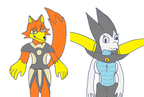 Fox and his partner dragon angle warrior by pd123sonic