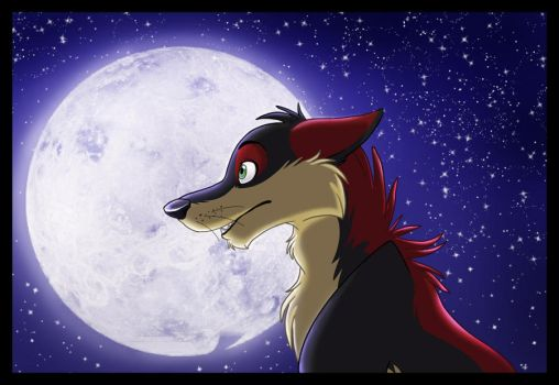 look at the moonlight by icelion87
