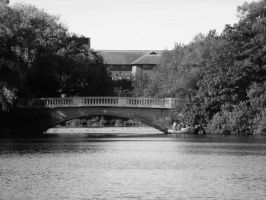 bridge by oxSWAiN