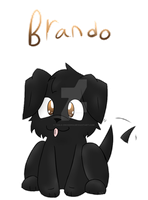 Brando by Tails-Crossing