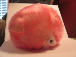 Pygmypuff 3 by Nightmare247Stock