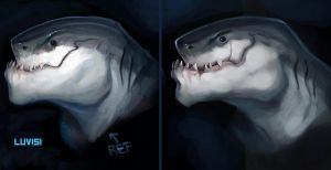 Study sharkman by Andy-Butnariu