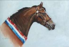 In Hand Champion Horse head by choccy-uk