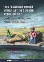 Guide Crocs for the Blind by SpikedMcGrath