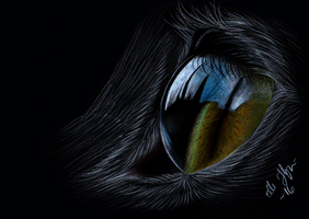 ~ Cat Eye colorpencil by GreenEco94