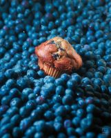 Blue is Delicious by JilliD