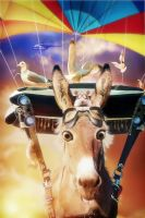 Flying Donkey by DesignerKratos