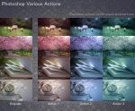Photoshop Various Actions by aoao2