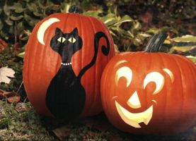 Black Cat and Jacko by Mishall