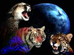 3 cat and earth by rwmtiger