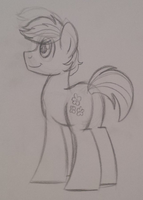 Double Diamond Sketch by drawponies