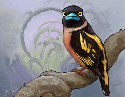 Black-and-yellow Broadbill by Nambroth