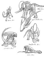Possible Alien Variations by Predaguy