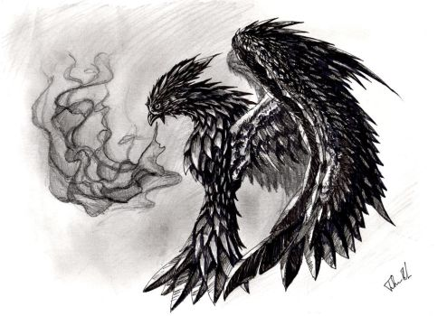 Phenix in balck and white by CaptainFaybs