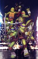 TMNT Contest Entry by TimareeZadel
