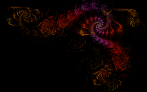 Fractal Rose Frame by riverfox1