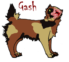 Gash the Loner by CNena