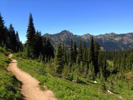 The Naches Peak Trail by FlutterbatIsMagic