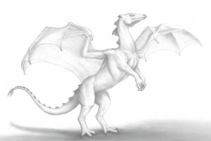 Launching Dragon - completed by bronze-dragonrider