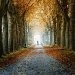 Going Home by Oer-Wout
