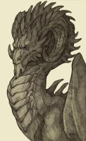 Dragon. by Lurelin