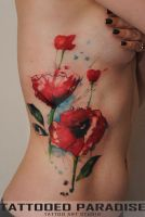 poppies by dopeindulgence